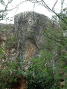 Rock Climbing Photo: Gladiatore V5 just under the tick vegetation of Ma...