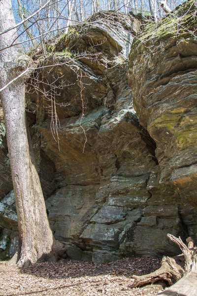 This is not exactly the Whitewater Crack, but it is in the same formation on the Whitewater Creek Trail. There are several cracks and an overhang in the formation.