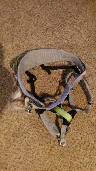 Rock Climbing Photo: harness 1