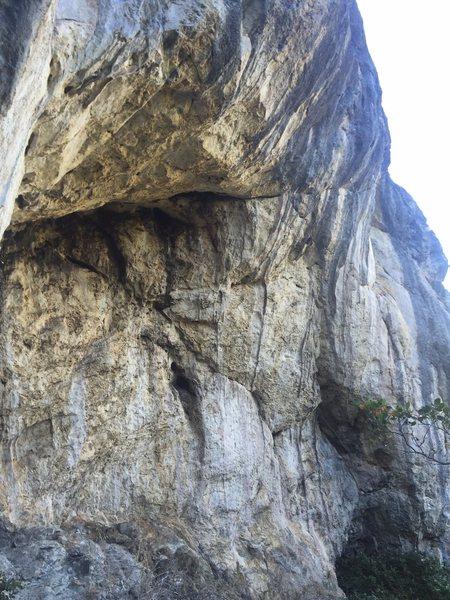 Rock Climbing Photo: The Room