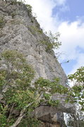 Rock Climbing Photo: The top part of Gigantica, the crux not been climb...