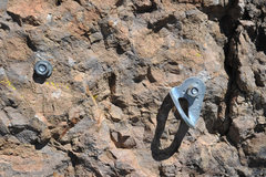 Rock Climbing Photo: A Walk on the Wild Side bolt