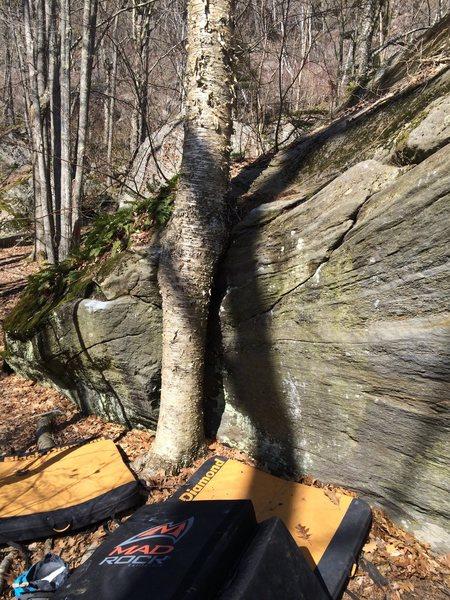 Rock Climbing Photo: Diamond in the Muff V1+