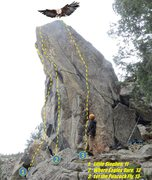 Rock Climbing Photo: Talon topo from the west.