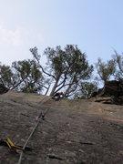 Rock Climbing Photo: The Flat Fields of Arkansas