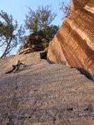 Rock Climbing Photo: Good stuff!
