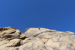 Rock Climbing Photo: cruising up early bird