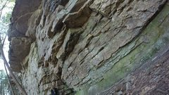 Rock Climbing Photo: Henry Robinson on the final moves of Wheatward Bou...