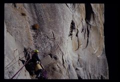 Rock Climbing Photo: Pitch 5 off guano ledge, Leaning Tower, West Face,...