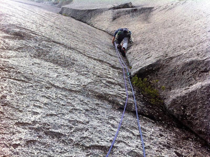 Rock Climbing Photo: P2 of Homo Sapien
