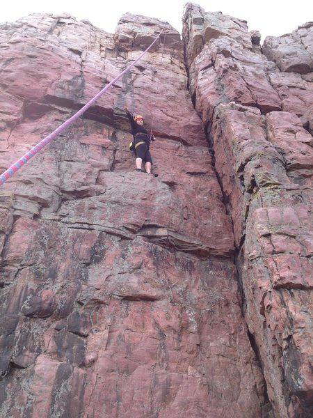 Kacey half way up Gulliver's travels.