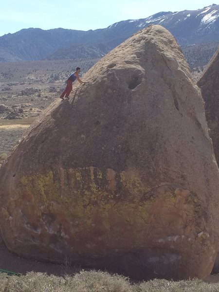 Topping out the best boulder in Bishop.