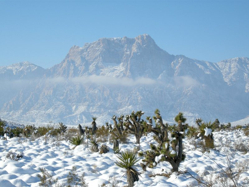Rock Climbing Photo: Mt. Wilson.