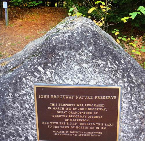 Rock Climbing Photo: A picture of the Brockway Plaque.