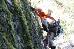 Rock Climbing Photo: Leading Trophy Wife in a sea of green (Photo: Tris...