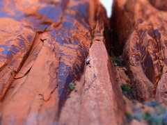 "Rock Climbing Photo: ""Snake Slab"" Wall Street"