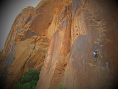 "Rock Climbing Photo: ""Nervous In Suburbia"" Moab, UT"