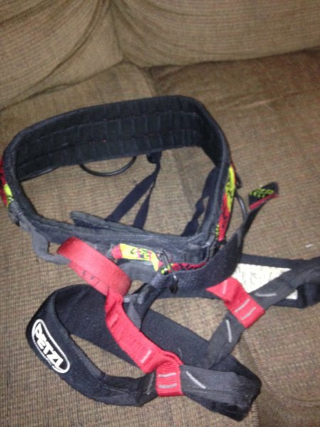 Petzel Harness<br> Selling: $10