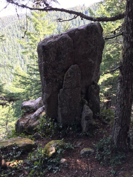 Found one pillar this weekend. You can climb up and set a top rope.