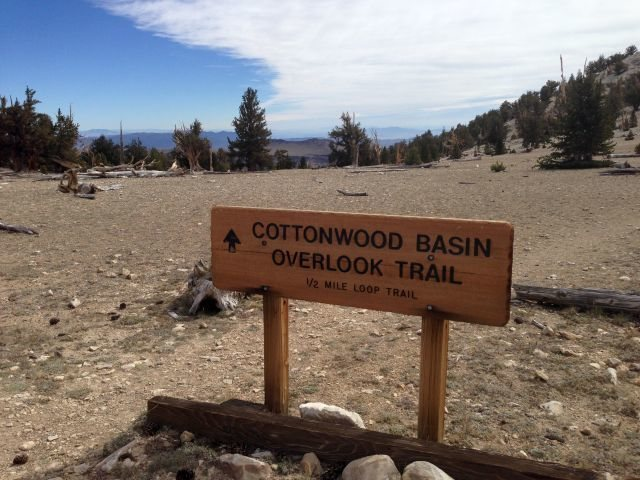 Cottonwood Basin Overlook Trail sign, White Mountains