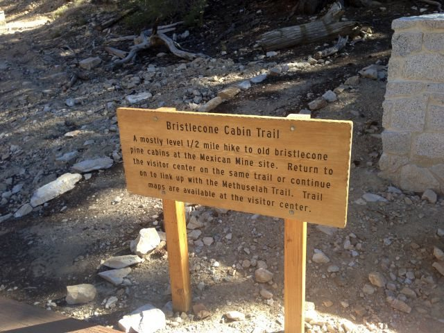 Bristlecone Cabin Trail sign, White Mountains