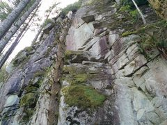 Rock Climbing Photo: First half of the climb. One bolt on the way to th...