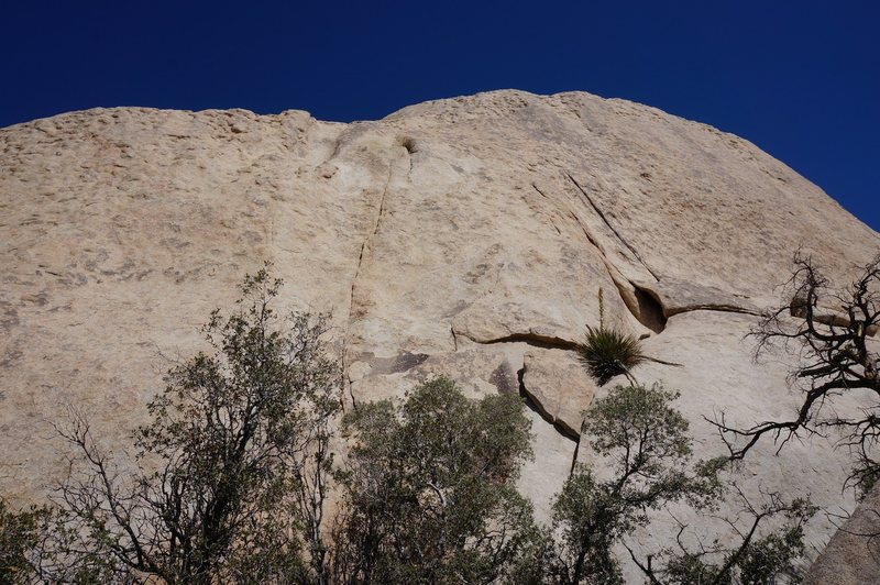 Rock Climbing Photo: You can barely make out bolts for Let Your Freak F...