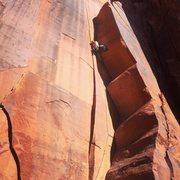 Rock Climbing Photo: Charlie on Gravy