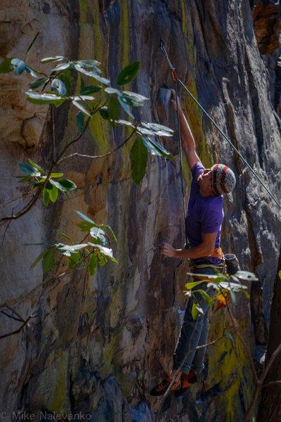 Rock Climbing Photo: Kurt F launching for that flat ledge.