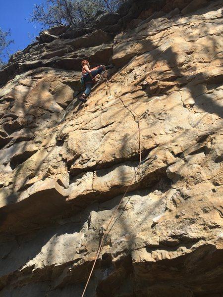 Rock Climbing Photo: David Weigel warming up on Injection Burn at Yello...