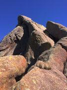Rock Climbing Photo: snakes head