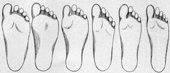 Rock Climbing Photo: foot shape