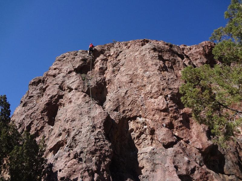 Sam climbing Prickly Proctologist.