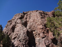 Rock Climbing Photo: Sam climbing Prickly Proctologist.