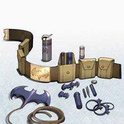 Rock Climbing Photo: Batman's utility belt with a batarang.