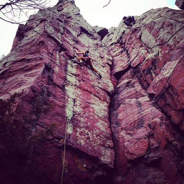 Rock Climbing Photo: Nic Oklobzija on the sharp-end!
