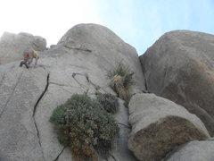 Rock Climbing Photo: The Vicar