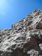 Rock Climbing Photo: Blue Agave