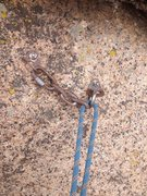 Rock Climbing Photo: Black Streak anchor.