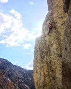Rock Climbing Photo: Seth Hendy finally sending!