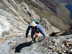 Rock Climbing Photo: Scrambling Laurel Mt., action shot.