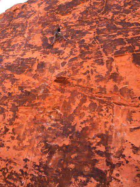 Rock Climbing Photo: Red rocks neveda