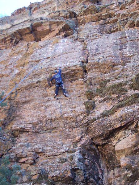 Rock Climbing Photo: Ray Floyd at the crux on Tiffany.