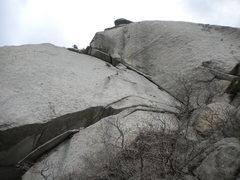 Rock Climbing Photo: The 1st half of the climb