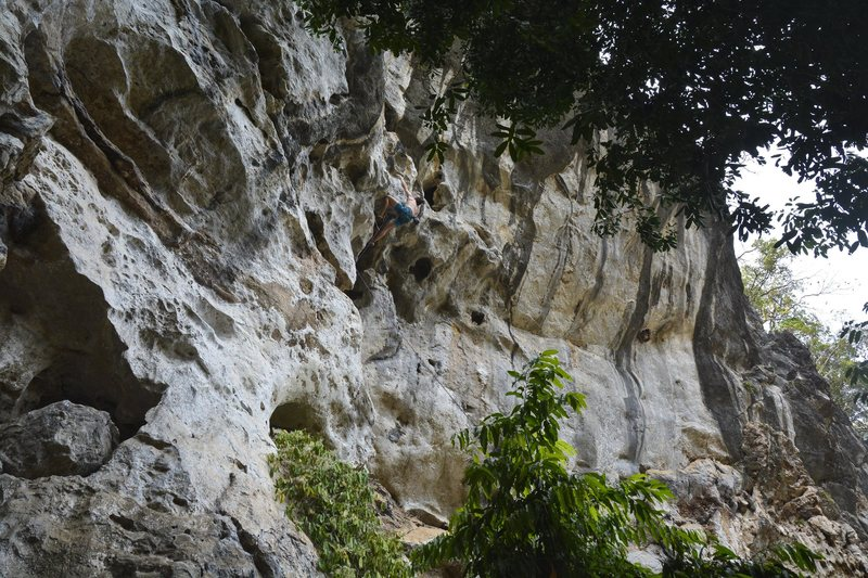Rock Climbing Photo: Beans trying Der Grimmel (5.12b)