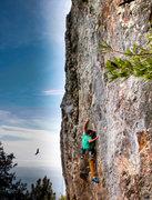 Rock Climbing Photo: Treasure Island.
