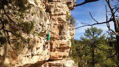 Rock Climbing Photo: Pit Pig