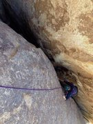 Rock Climbing Photo: saddle rock -  right on route - tree