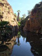 Rock Climbing Photo: Creek running between the walls. Noticed some poss...