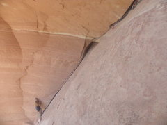 Rock Climbing Photo: Pitch three....mega.  Arizona 5.9 ++....Joshua Tre...